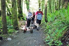 "6 ""Unknown"" Dog-friendly Trails NearSeattle"