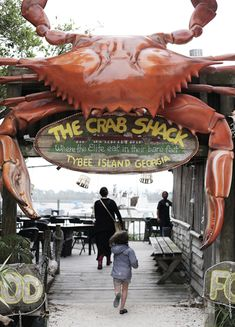 the crab shack on Tybee Island. For three dollars you can feed the alligators gator chow with a bamboo pole. This was something that I really enjoyed doing. The gators were small, but they were strong. A place like this would do well in Louisiana. Tybee Island Beach, Tybee Island Georgia, Savannah Georgia, Savannah Chat, Best Places To Vacation, Vacation Trips, Vacations, Water Island, Spring Break Trips