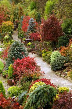 Всесезонный сад четы Ньютон в Уолсолле