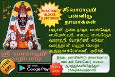 Vedic Mantras, Hindu Mantras, God Prayer, Daily Prayer, Tamil Astrology, Numerology Horoscope, Lord Hanuman Wallpapers, Ganesh Lord, Krishna Leela