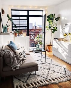 Try one of the best cute living room ideas with functionality and neutral tones. Try one of the best cute living room ideas with functionality and neutral tones. Studio Apartment Organization, Cute Apartment, Studio Apartment Decorating, Apartment Layout, Apartment Design, Apartment Living, Apartment Plants, Cozy Studio Apartment, One Room Apartment