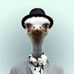 Yago Partal | Les zoo portraits de Yago Partal - Image 14 sur 22 - 20minutes.fr