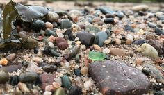 The best beaches for collecting sea glass in Digby County, Nova Scotia. : The best beaches for collecting sea glass in Digby County, Nova Scotia. Sea Glass Beach, Sea Glass Art, Ottawa, East Coast Canada, Nova Scotia Travel, Annapolis Royal, Canadian Travel, Canadian Rockies, East Coast Travel