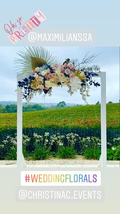 #ceremonyideas #adelaide Floral Wedding, Wedding Venues, Wedding Inspiration, Weddings, Bride, Wedding Reception Venues, Wedding Bride, Wedding Places, Bridal