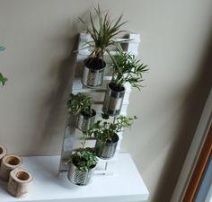 Super idée! Echelle végétale - Meubles et objets - Pure Sweet Home