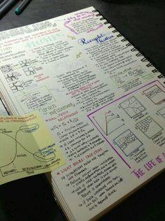 Letra en verde bonita y me gustan los dibujos