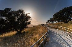 Vista Pathway in California [OC] [60004000]