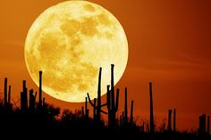 Supah Moon!