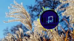 Jfarr - Still Mine (feat. Stevyn) [Prog House] Extended Version