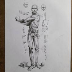 Exceptional Drawing The Human Figure Ideas. Staggering Drawing The Human Figure Ideas. Figure Drawing Tutorial, Human Figure Drawing, Figure Drawing Reference, Guy Drawing, Anatomy Reference, Life Drawing, Academic Drawing, Drawing Studies, Academic Art