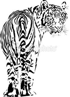Tiger illustration B Royalty Free Stock Vector Art Illustration
