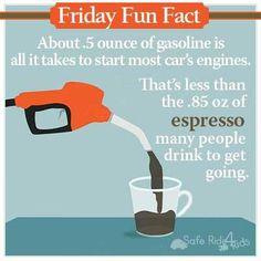 Friday Fun Fact