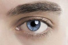 We found this interesting article explaining how the #humaneye works! #PollardsOpticians
