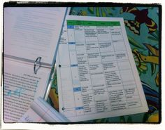 """Novel Revision Strategies: A Day's Work in Pictures. On the heels of yesterday's post with revision strategies, this shows the process in pictures w strats for using color, """"bouncer"""" outline & more to manage a large document revision."""