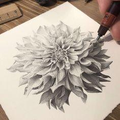 Black Pen Drawing, Doodle Art Drawing, Cool Art Drawings, Ink Pen Drawings, Stippling Drawing, Dotted Drawings, Flower Drawing Tutorials, Scribble Art, Flower Artists