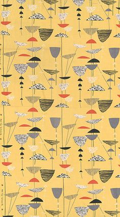 Lucienne Day