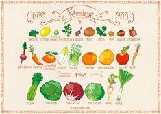 Calendrier des fruits et légumes de saison   AnnSo Cuisine