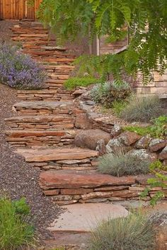 Rustic landscaping steps and retaining wall... by KaleighS