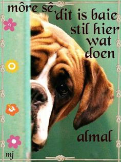 Lekker Dag, Morning Qoutes, Afrikaanse Quotes, Funny Boxer, Goeie More, Good Morning Wishes, Verses, Inspirational Quotes, Sayings