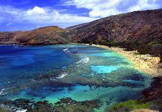 【オアフ島】ハナウマ湾 火山からできた湾で、青い海とサンゴ礁が美しく広がります。全米ビーチNo.1に選ばれたこともあります。政府により海洋生物などが保護されていて、自然がそのまま残っています。トロピカルな色の海はまさにハワイ! 観光客のみならず地元の人々にも愛されているスポットです。自然保護区と指定されているため飲酒・喫煙・釣りはもちろん、動物に触れることや餌付け、サンオイルを塗ることなど事細かな禁止事項があるので注意してください。