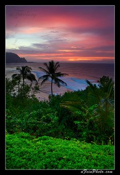 ✯ Tropical Sunset