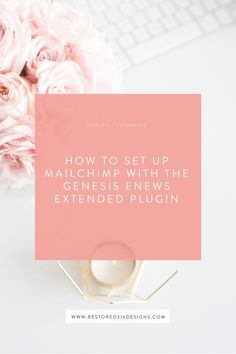 How to set up MailChimp with the Genesis eNews Extended Plugin - Restored 316 // Feminine Wordpress Themes using the Genesis Framework by Lauren Gaige