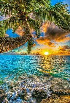 (¯`´¯) Bom dia! ¸¸`•.¸.•´ ⁀⋱‿✫ ❝... Seja feliz.... abrace com alegria o dia especial que é hoje.... é único... é um presente de Deus preparado com o mais puro e sincero carinho para você ...❞ ✍ Jared Hassan `* ¸¸`•.¸.•´ ⁀⋱‿✫ღ Feliz Final de Semana ღ