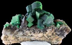 Torbernite is the mineral from hell. The prism shaped green crystals form as secondary deposits in granitic rocks, and are composed of uranium. Formed through a complex reaction between phosphorous, copper, water and uranium