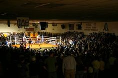 Ace Miller Memorial Boxing Tournament 2013 Teaser by SAE TN KAPPA. No Church In the Wild