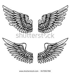 Vintage wings isolated on white background. Design elements for logo, label, emblem, sign, brand mark. Vector illustration.