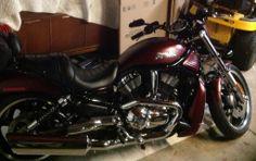 2008 night rod vrscd Harley Night Rod, Hd V Rod, Harley Davidson, Motorcycle, Vehicles, Motorcycles, Car, Motorbikes, Choppers