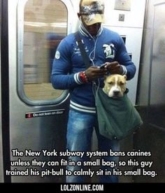 The New York Subway System Bans Canines...