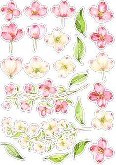 Roses_стили и странички для скрапа Printable Planner Stickers, Journal Stickers, Scrapbook Stickers, Scrapbook Paper, Tumblr Stickers, Cute Stickers, Monogram Wallpaper, Aesthetic Stickers, Watercolor Flowers