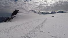 La salita al Breithorn. Una semplice uscita di alpinismo tra le vette del Monte Rosa...