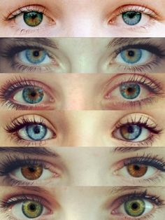 I have central heterochromia eyes (second down). Would be cool to have complete heterochromia eyes (first) or even sectoral heterochromia (third down ) Gorgeous Eyes, Pretty Eyes, Cool Eyes, Amazing Eyes, Photo Oeil, Heterochromia Eyes, Human Eye, Eye Photography, Eye Art