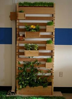 Spring Project: put hooks on boxes to make them detachable.  Herbs and kale on bottom.