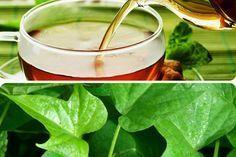 Propriedades do chá das folhas da batata doce - Lar Natural