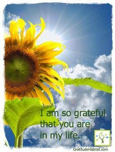 Grateful for you. www.GratitudeHabitat.com #gratitude-quote