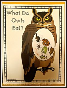 What Do Owls Eat? FREE cut-and-paste activity in both color and b&w Owls Kindergarten, Owl Preschool, Preschool Curriculum, Kindergarten Activities, Preschool Ideas, Homeschooling, Preschool Projects, Preschool Science, Owl Writing