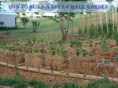 How To Build A Straw Bale Garden