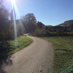 Völkermarkt, autumn Country Roads, Autumn, Fall Season, Fall