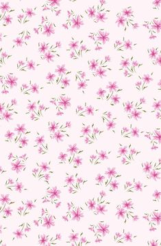 Pretty pink flowers on a pale pink background Cellphone Wallpaper, Iphone Wallpaper, Cute Wallpapers, Wallpaper Backgrounds, Flower Patterns, Print Patterns, Flowery Wallpaper, Apple Watch Wallpaper, Little Flowers