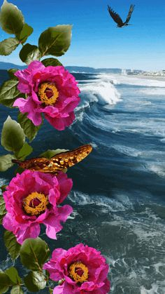 1 million+ Stunning Free Images to Use Anywhere Beautiful Nature Wallpaper, Beautiful Gif, Beautiful Roses, Beautiful Landscapes, Beautiful Pictures, Flowers Gif, Beautiful Bouquet Of Flowers, Good Night Gif, Good Morning Gif