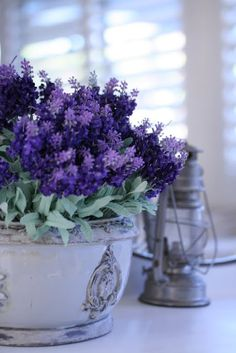 Lavender Cottage: in beautiful ceramic container and with an old lamp. Lavender Cottage, French Lavender, Lavender Fields, Lavender Color, Lavender Flowers, Purple Flowers, Lavander, Lavender Bouquet, Color Lavanda