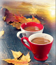 Gif hot drink autumn leaves butterfly