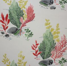1940 039 s Vintage Wallpaper Bathroom Red Green and Yellow Sea Weed Sea Shells Bathroom Red, Bathroom Wallpaper, Yellow Sea, Floral Illustrations, Seaweed, Red Green, Sea Shells, 1940s, Color Pop