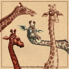 Giraffes I CHARACTER DESIGN REFERENCES | Find more at https://www.facebook.com/CharacterDesignReferences if you're looking for: #art #character #design #model #sheet #illustration #best #concept #animation #drawing #archive #library #reference #anatomy #traditional #draw #development #artist #how #to #tutorial #giraffe
