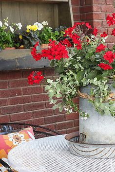 Chicken feeder / waterer used as a planter. PLUS more Creative Container Garden Ideas