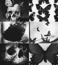 [½] mythological objects ➝ thanatos' butterflyThe soul of death.
