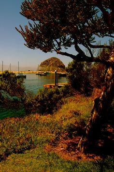 Delta Marina Rv Waterfront Rio Vista Ca Full Hookkups